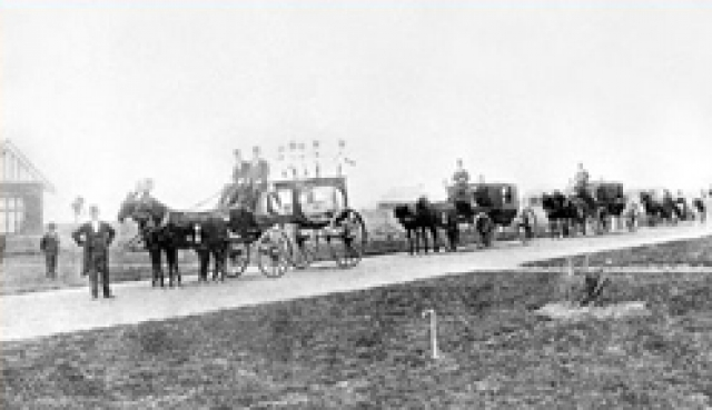 Victorian Hearses and Horses