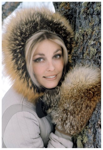 Does Sharon Tate's spirit still roam the property where she was murdered?