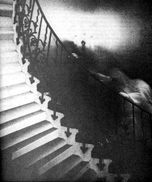 The Tulip Staircase Ghost is one of the most famous paranormal images ever taken. To this day the image cannot be explained by experts in the field.