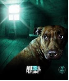This show features ghost stories and paranormal investigations involving animals.